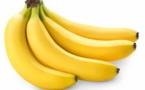 Côte d'Ivoire : Les producteurs de bananes desserts crient leur misère